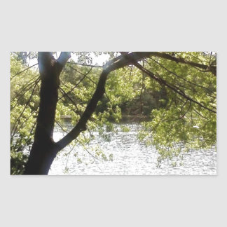 Reflections in the woods rectangular sticker