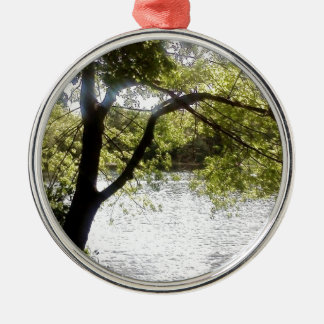 Reflections in the woods Silver-Colored round decoration