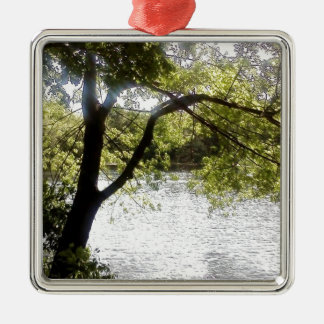 Reflections in the woods Silver-Colored square decoration