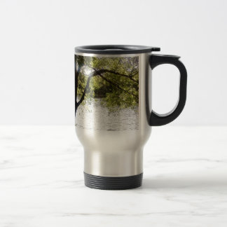 Reflections in the woods travel mug