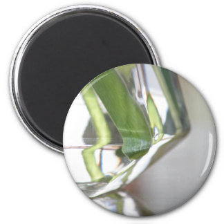 Reflections magnet