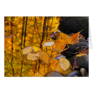 Reflections of Autumn Gold Greeting Card