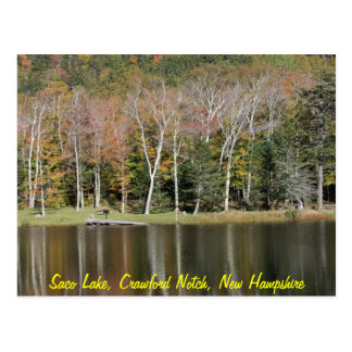 Reflections on Saco Lake Postcard
