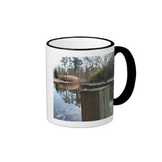Reflections on the Water Mugs