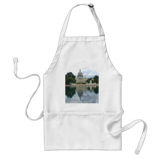 Reflections- US Capitol Aprons