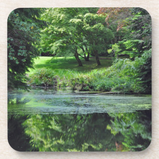 Reflective spring pond coaster