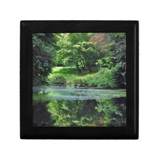 Reflective spring pond gift box