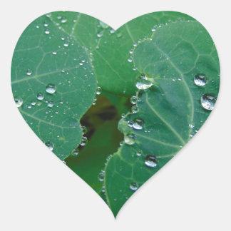 Refreshing Rain Drops Heart Sticker