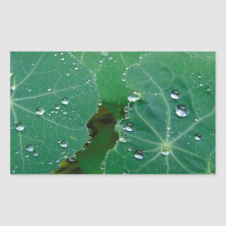 Refreshing Rain Drops Rectangular Sticker