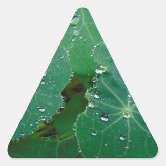 Refreshing Rain Drops Triangle Sticker