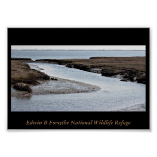 Refuge Waterscape Photo Poster