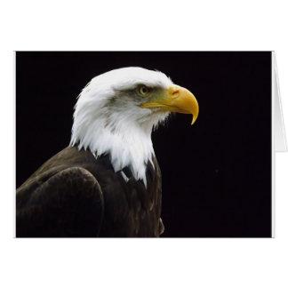 Regal Bird Greeting Card