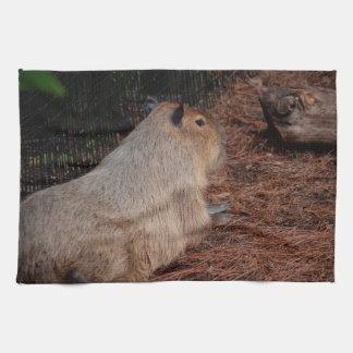 regal capybara back view animal tea towel