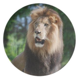 Regal Lion  Plate