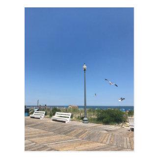 Rehoboth Beach Boardwalk Seagulls Sky Ocean Photo Postcard