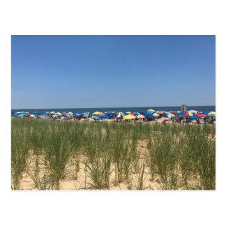 Rehoboth Beach Delaware Umbrellas Sand Ocean Grass Postcard