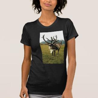 Reindeer #01 T-Shirt