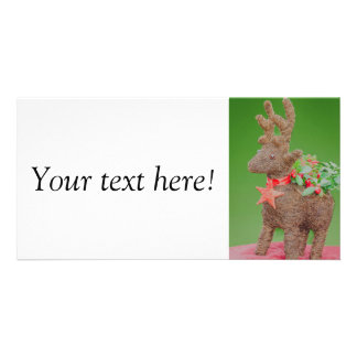 Reindeer Christmas decoration Photo Card