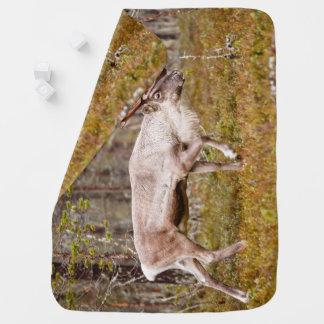 Reindeer walking in forest baby blanket