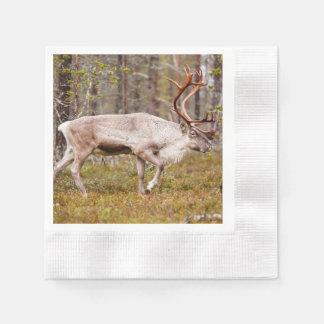 Reindeer walking in forest disposable napkin