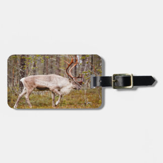 Reindeer walking in forest luggage tag