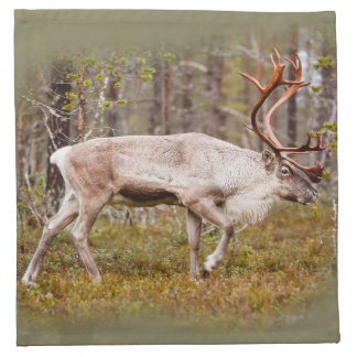 Reindeer walking in forest napkin