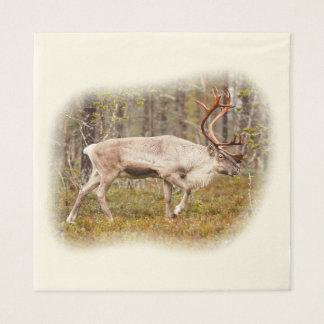 Reindeer walking in forest paper napkin