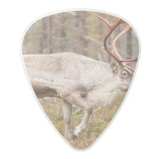Reindeer walking in forest polycarbonate guitar pick