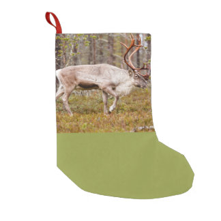 Reindeer walking in forest small christmas stocking