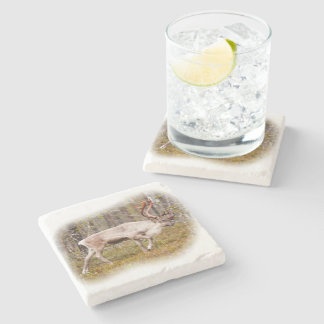 Reindeer walking in forest stone coaster