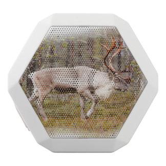 Reindeer walking in forest white bluetooth speaker