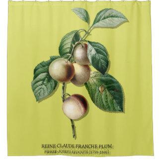 REINE CLAUDE FRANCHE PLUM SHOWER CURTAIN