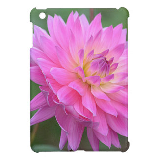 Rejoice iPad Mini Covers