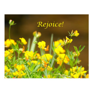 Rejoice! Postcard