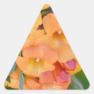 Rejoice Triangle Sticker