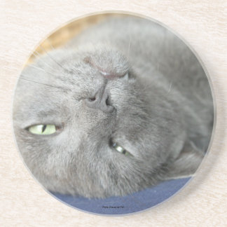 Relax! Grey Purring Cat Drink Coaster