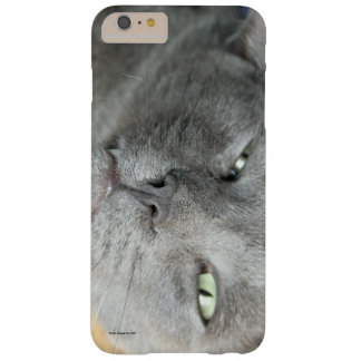 Relax! Grey Purring Cat HTV Vivid/Raider 4G Case