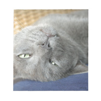 Relax! Grey Purring Cat Notepad