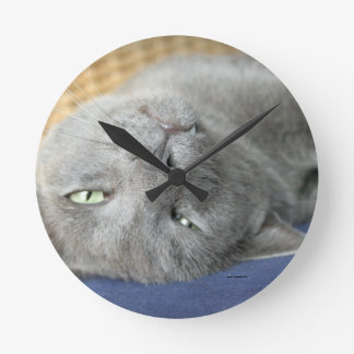 Relax! Grey Purring Cat Round Clock