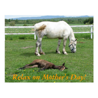 Relax on Mother's Day! Postcard