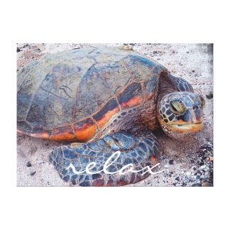 """""""Relax"""" Quote Hawaii Sea Turtle Close-up Photo Canvas Print"""