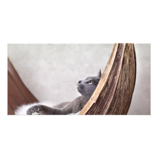 Relaxed Cat Personalized Photo Card