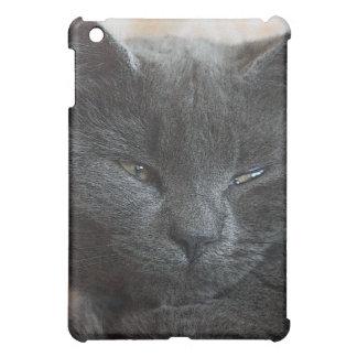 Relaxed Kitten iPad Mini Cover