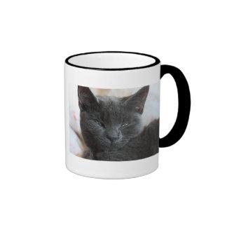 Relaxed Kitten Mug