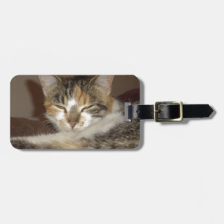 Relaxed Kitty Bag Tag