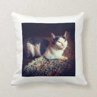 Relaxed Kitty Cushion