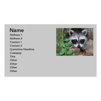 Relaxed Raccoon Business Card Template