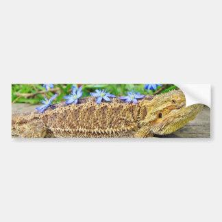 Relaxing Bearded Dragon Bumper Sticker