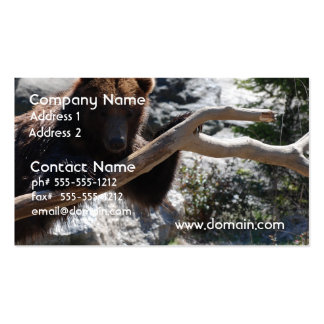 Relaxing Brown Bear Business Cards