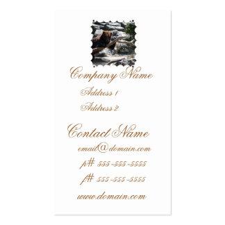 Relaxing Brown Bear Business Card Templates